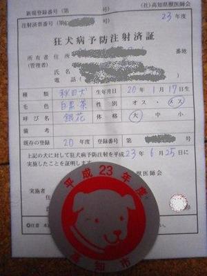 Imgp3737