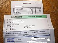 Imgp6250