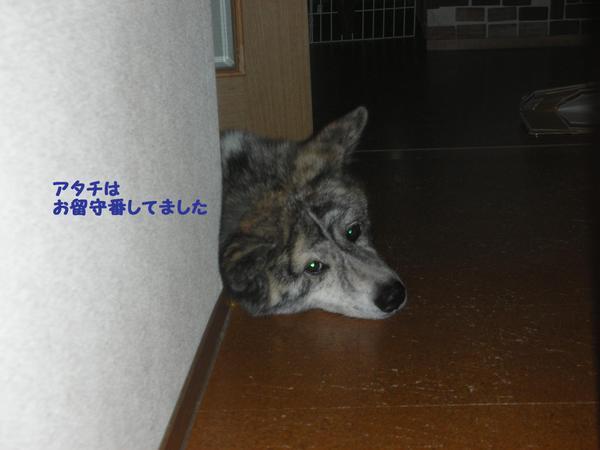 Dscn1657_2